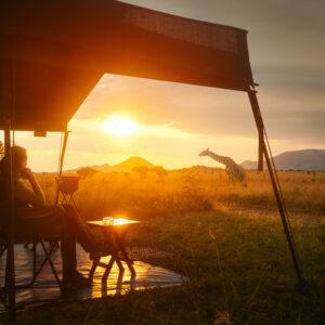 Safari met zonsondergang